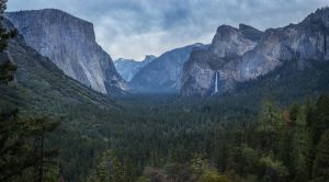CAL_Yosemite_Valley_Giant